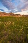 Badlands Prairie